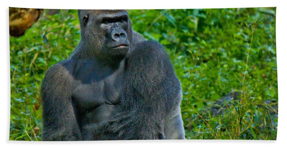 Silverback Bath Sheet featuring the photograph Silverback Gorilla by Jonny D