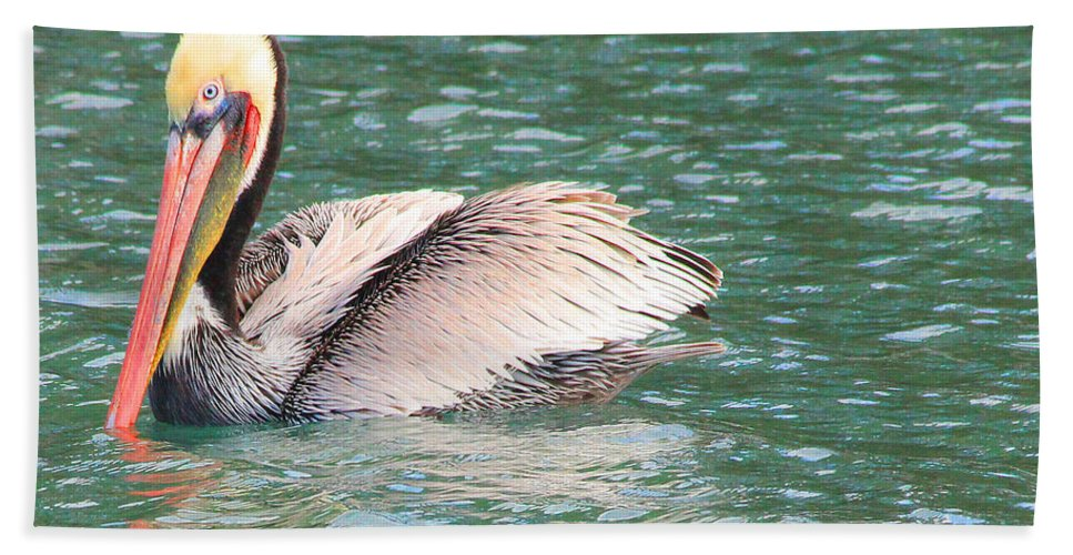 Pelican Hand Towel featuring the photograph Silvery Softness by Kris Hiemstra