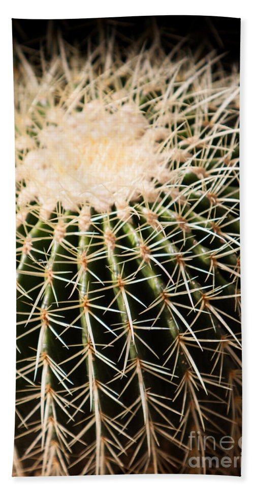 Botanical Hand Towel featuring the photograph Single Cactus Ball by John Wadleigh