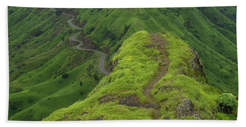 Path Hand Towel featuring the photograph Skc 3577 Path Passing by Sunil Kapadia