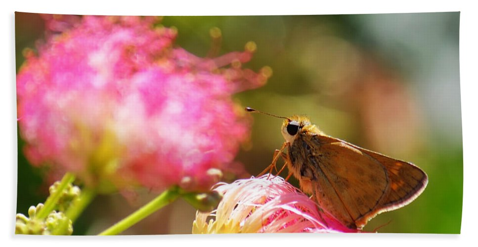 Macro Hand Towel featuring the photograph Skipper Butterfly On Mimosa Flower by Jason Politte