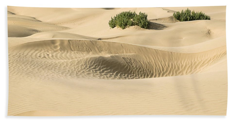 Smooth Bath Sheet featuring the photograph Skn 1408 The Smooth Dunes by Sunil Kapadia