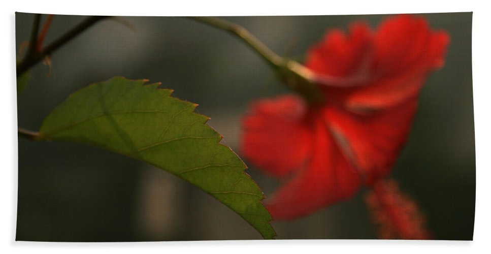 Abstract Hand Towel featuring the photograph Skc 0449 Hibiscus II by Sunil Kapadia