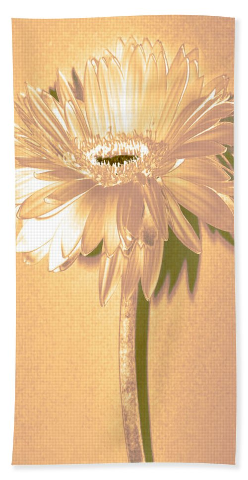 Original Photo Hand Towel featuring the photograph Slice Of Lime Zinnia by Sherry Allen