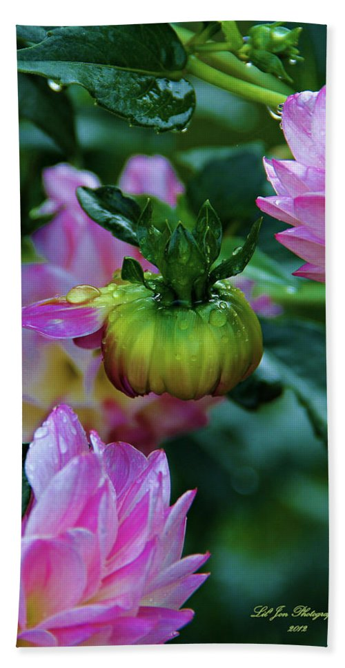 Dahlia Hand Towel featuring the photograph Small Speaks Volumes by Jeanette C Landstrom