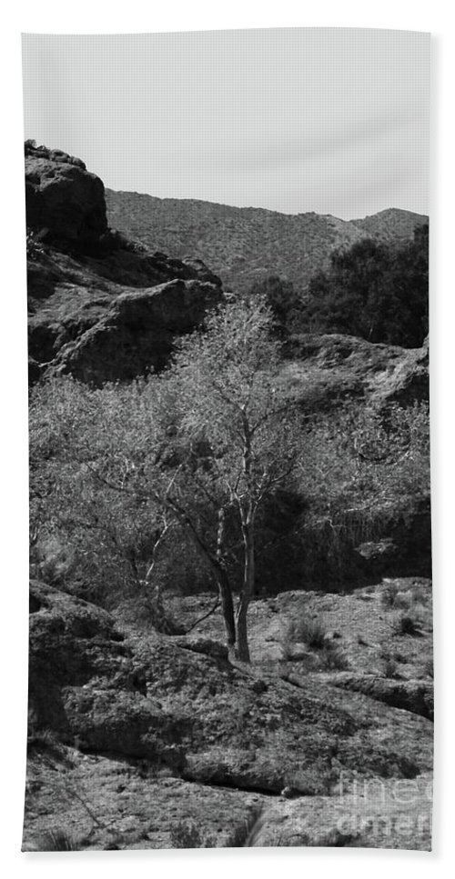 Small Bath Sheet featuring the photograph Small Tree by Kathleen Struckle