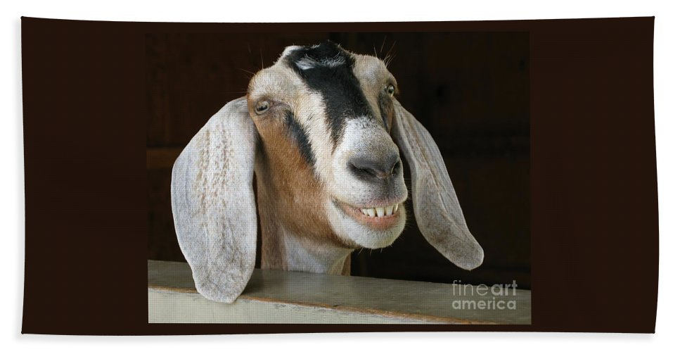 Goat Hand Towel featuring the photograph Smile Pretty by Ann Horn