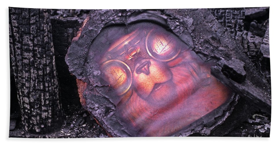 Smokey The Bear Bath Sheet featuring the photograph Smokey Bear All Burned by Ed Cooper Photography