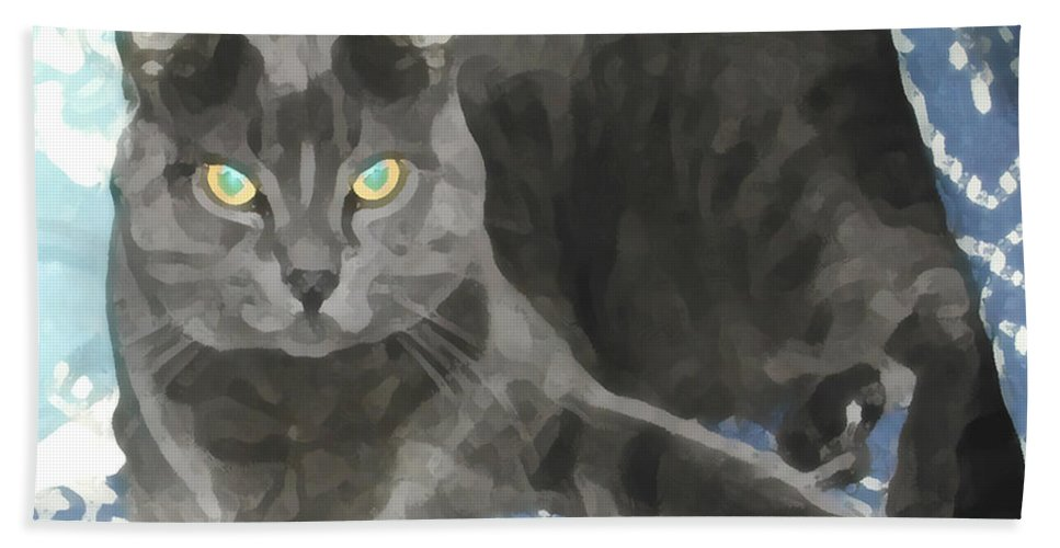 Grey Hand Towel featuring the photograph Smokey On A Blue Blanket by Jeanne A Martin
