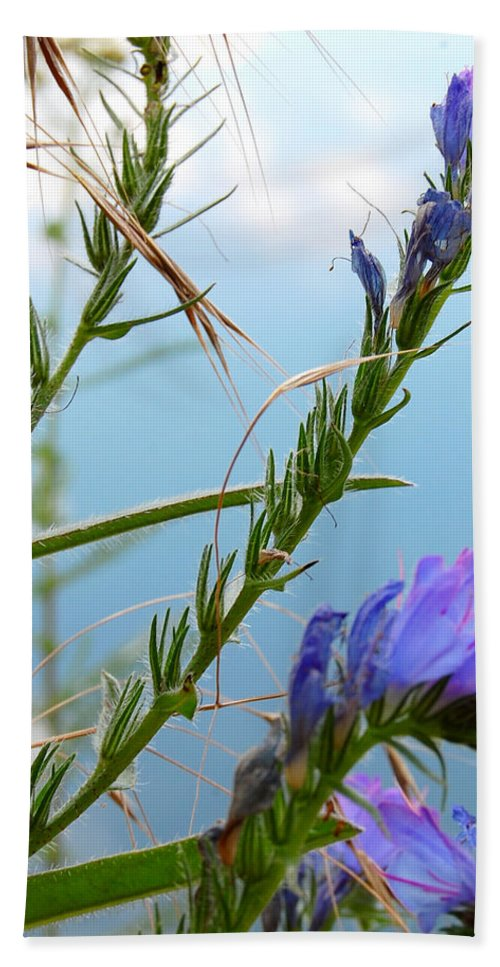 Snail Hand Towel featuring the photograph Snail On Flowers by Gina Dsgn