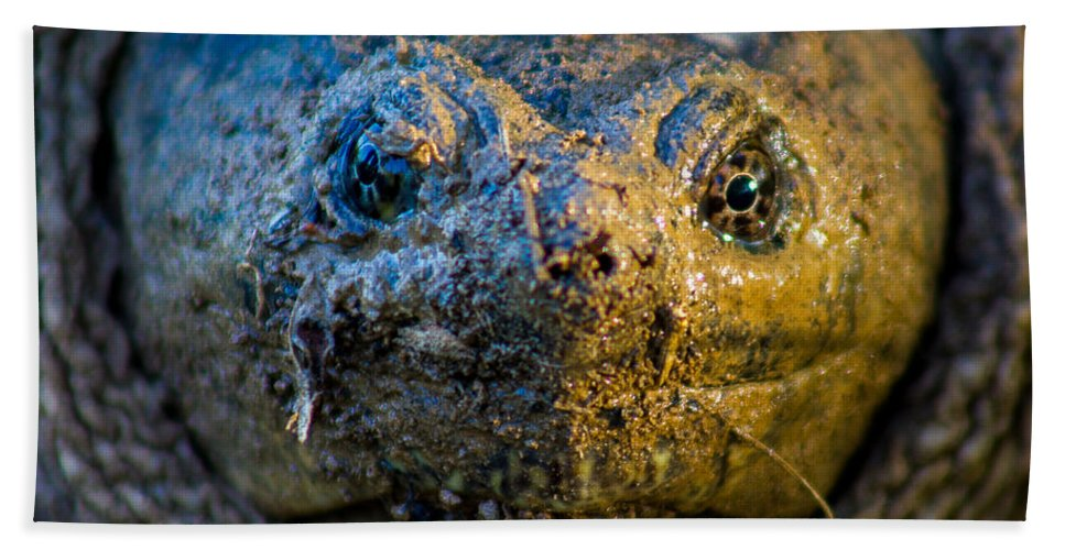 Profile Bath Sheet featuring the photograph Snapping Turtle by Gaurav Singh