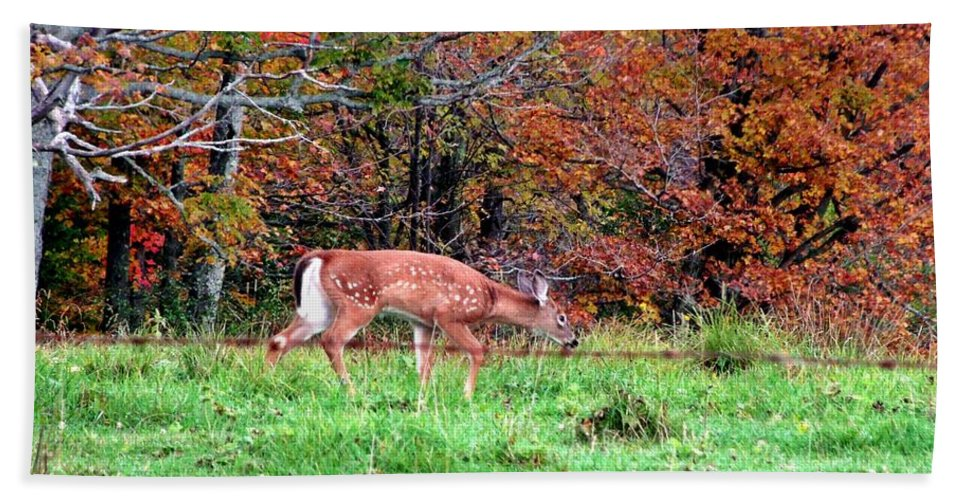 Deer Bath Sheet featuring the photograph Sneaking Out by Christian Mattison