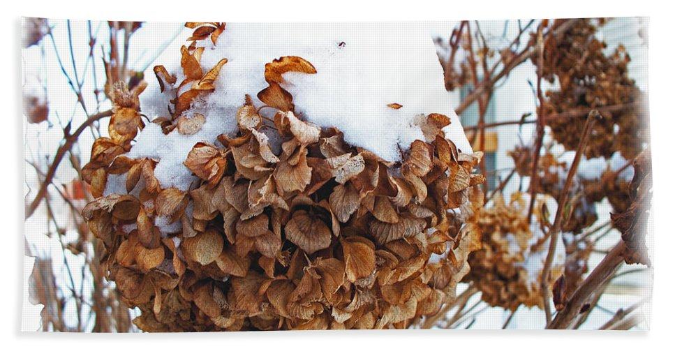 Nature Hand Towel featuring the photograph Snow Bonnet by Debbie Portwood