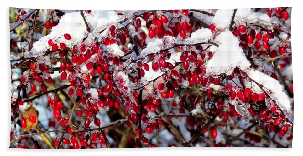 Red Berries Hand Towel featuring the photograph Snow Capped Berries by Elizabeth Dow