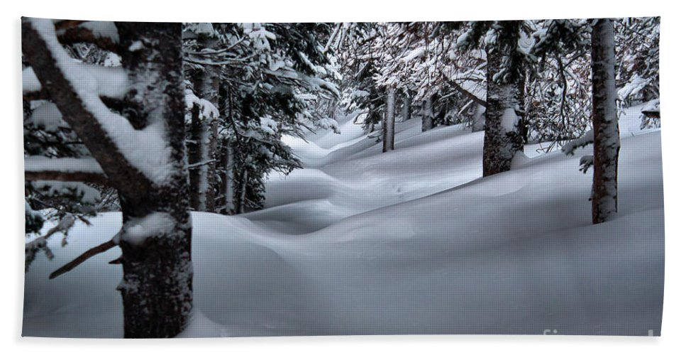 Winterscape Bath Sheet featuring the photograph Snow Covered Trail by Steven Reed