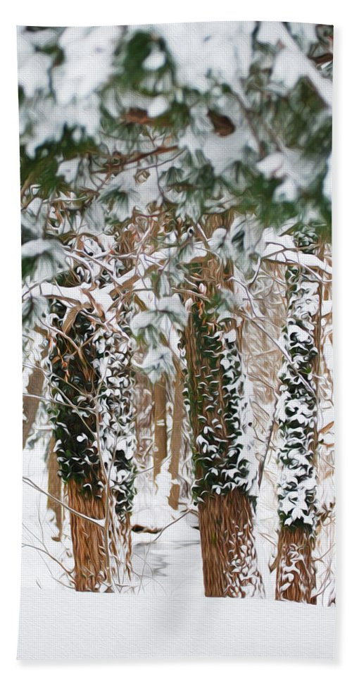 Snow Hand Towel featuring the photograph Snow Covered Trees by Tracy Winter