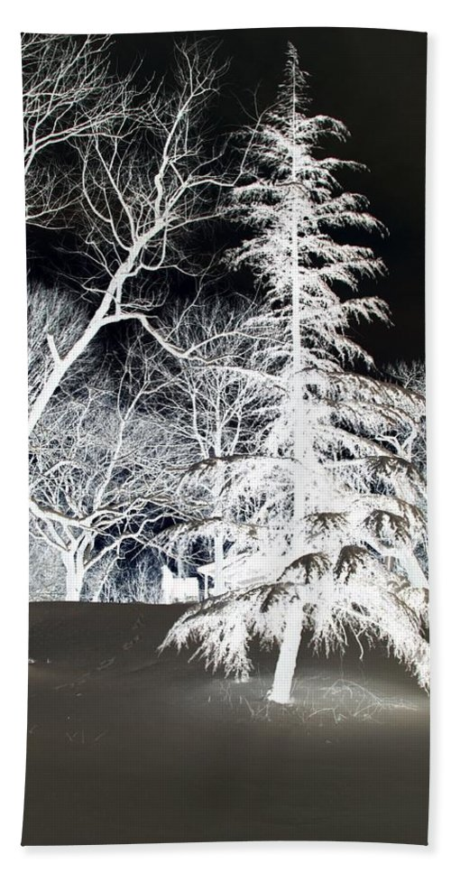 Tree Bath Sheet featuring the photograph Snow Day Inverted by Carolyn Stagger Cokley
