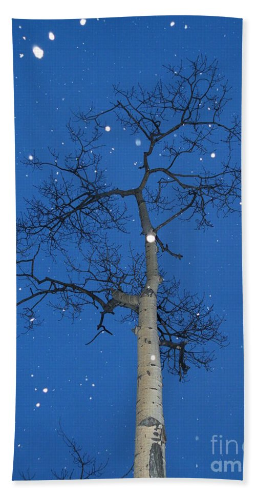 Snow Bath Sheet featuring the photograph Snow Falling Where The Leaves Used To Be Ethe by Brian Boyle