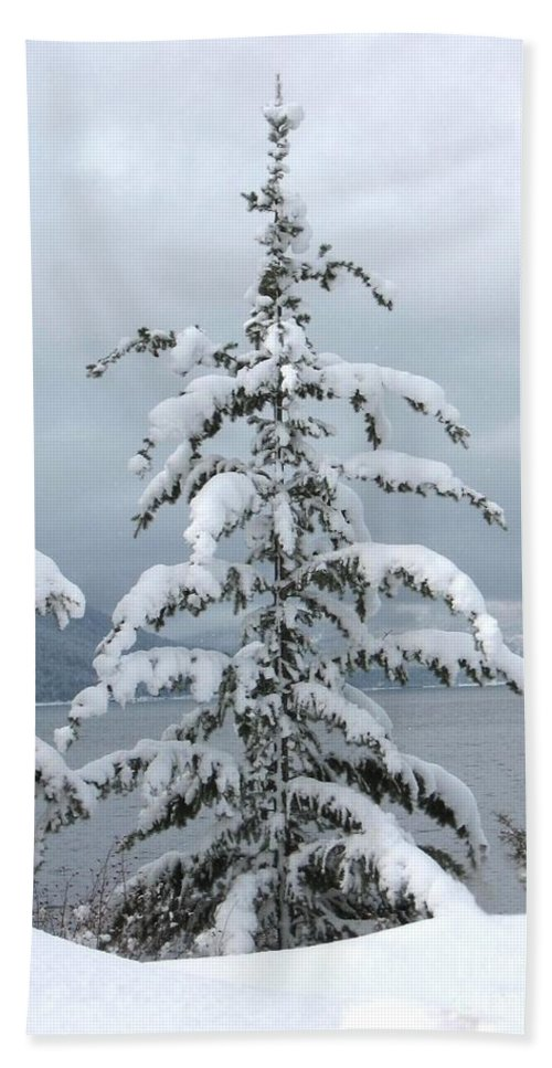Snow Hand Towel featuring the photograph Snow Laden Tree by Leone Lund