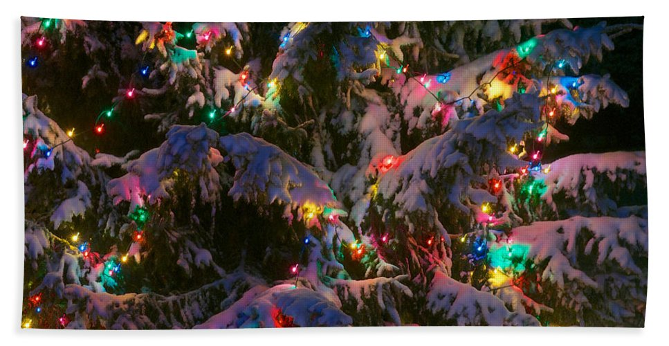 Christmas Hand Towel featuring the photograph Snow On The Christmas Tree 1 by Mark Dodd