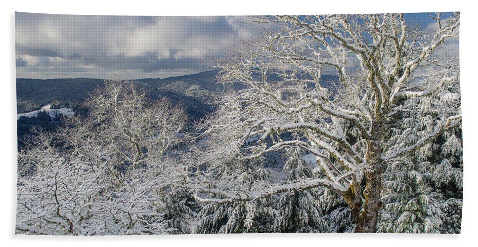 Clouds Hand Towel featuring the photograph Snow Scene At Berry Summit by Greg Nyquist
