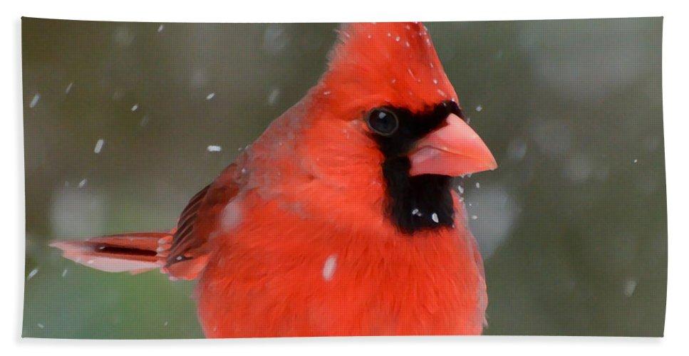 Snowflake Cardinal Bath Sheet featuring the photograph Snowflake Cardinal by Kerri Farley