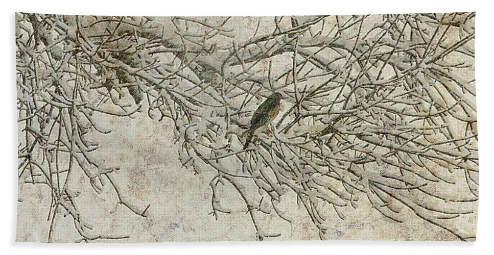 Snow Storm Hand Towel featuring the photograph Snowy Bird by Elizabeth Winter