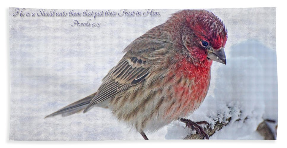 Nature Hand Towel featuring the photograph Snowy Day Housefinch With Verse by Debbie Portwood