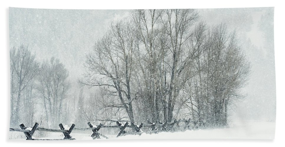 Grand Teton Bath Sheet featuring the photograph Snowy Day In The Tetons by Sandra Bronstein