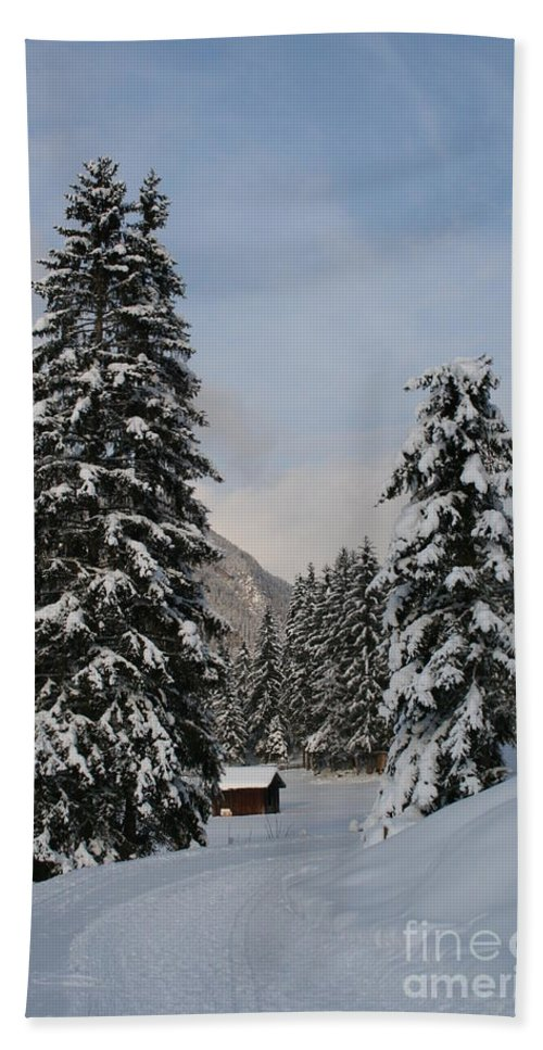 Snow Hand Towel featuring the photograph Snowy Fir Trees by Christiane Schulze Art And Photography