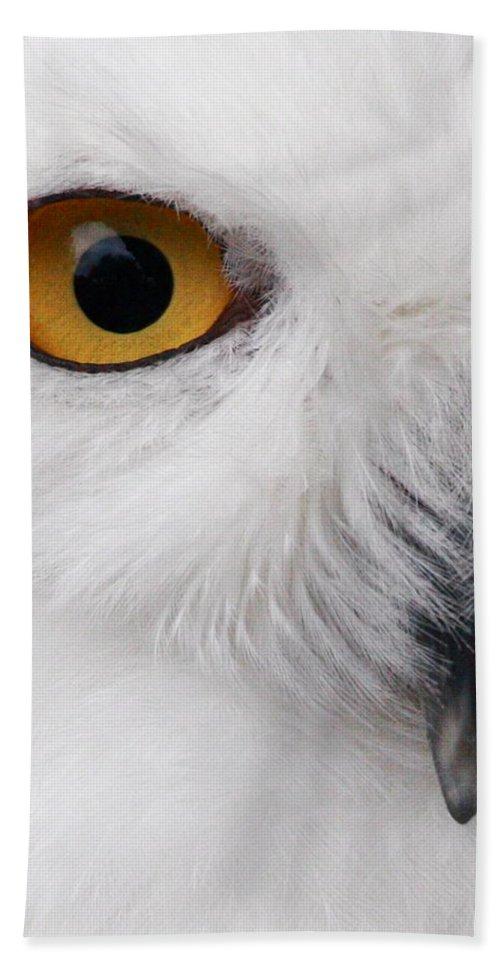 Snowy Owl Bath Sheet featuring the photograph Snowy Owl by Andrew McInnes