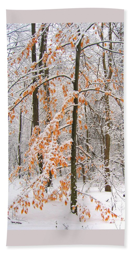 Winter Hand Towel featuring the photograph Snowy Woods by Ann Horn