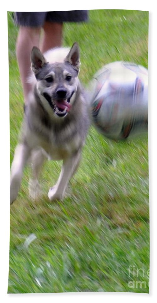 Dog Bath Sheet featuring the photograph Soccer Time by Christina McKinney