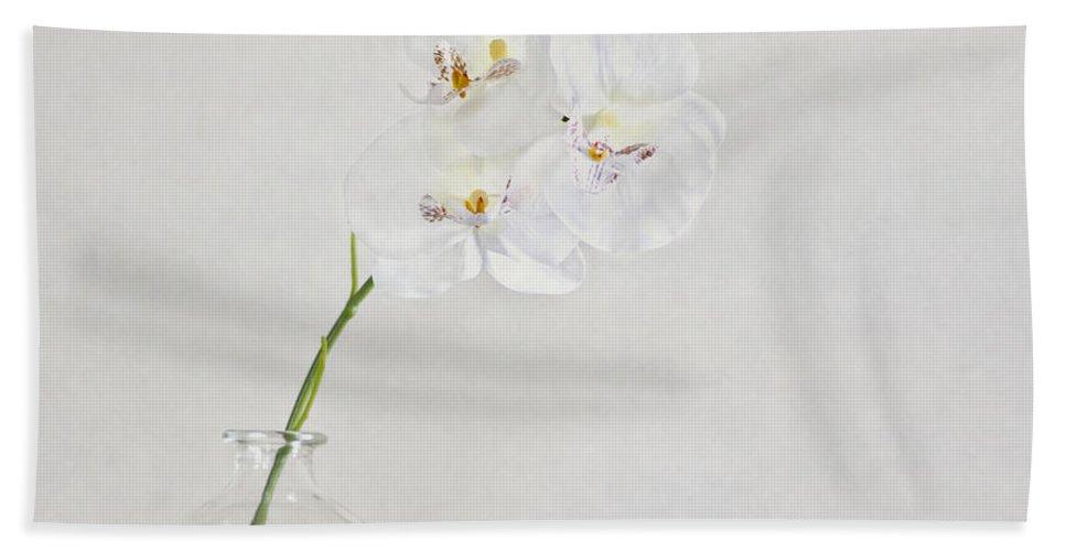 Flower Bath Sheet featuring the photograph Soft As A Whisper by Evelina Kremsdorf