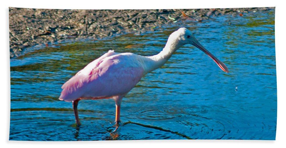 Spoonbill Hand Towel featuring the photograph Soft Pink Spoonbill by Stephen Whalen