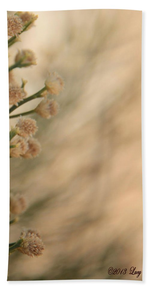 Soft Hand Towel featuring the photograph Softness In The Desert by Lucy VanSwearingen