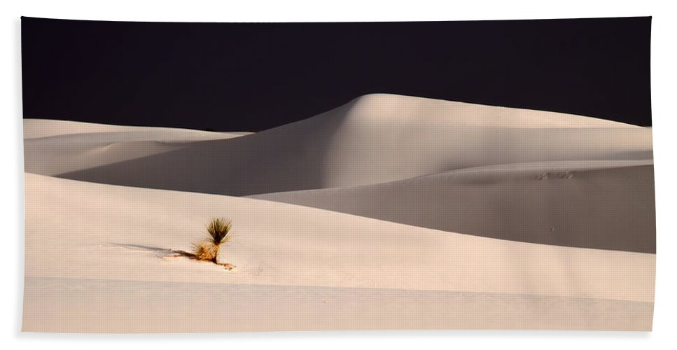 Sand Dunes Hand Towel featuring the photograph Sole Survivor by Tom Weisbrook