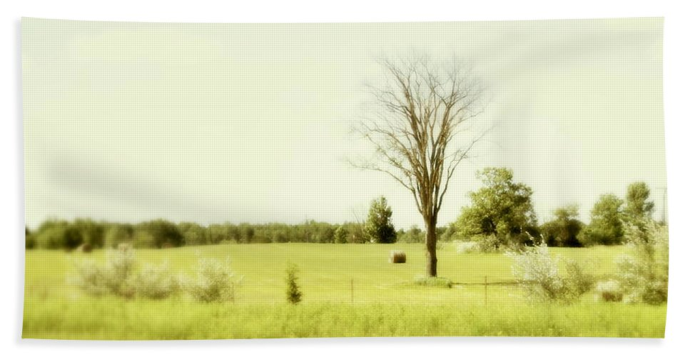 Trees Hand Towel featuring the photograph Solitude by Marysue Ryan