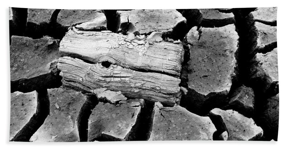 Dirt Bath Sheet featuring the photograph Some More Wood Black And White by Teri Schuster