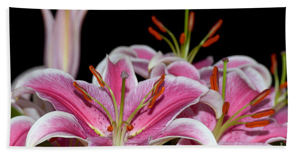 Lily Hand Towel featuring the photograph Sorbonne Lily Macro by Terri Winkler