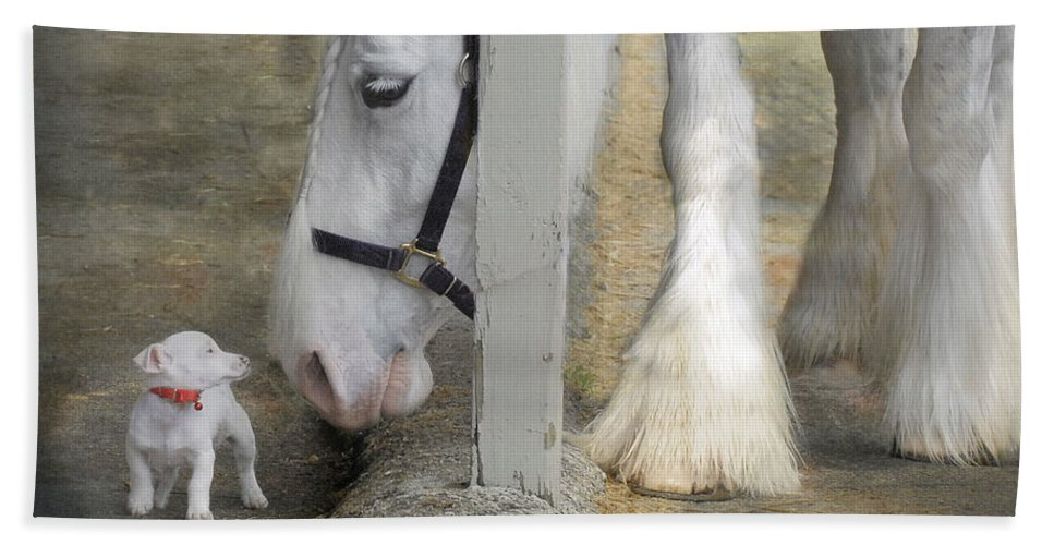 Horses Bath Towel featuring the photograph Sparky and Sterling Silvia by Fran J Scott