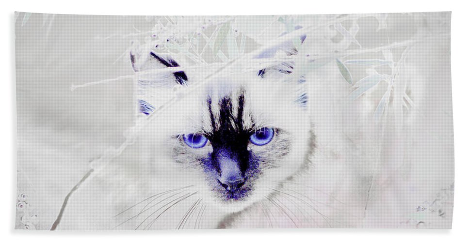 Animals Bath Sheet featuring the photograph Spellbound by Holly Kempe
