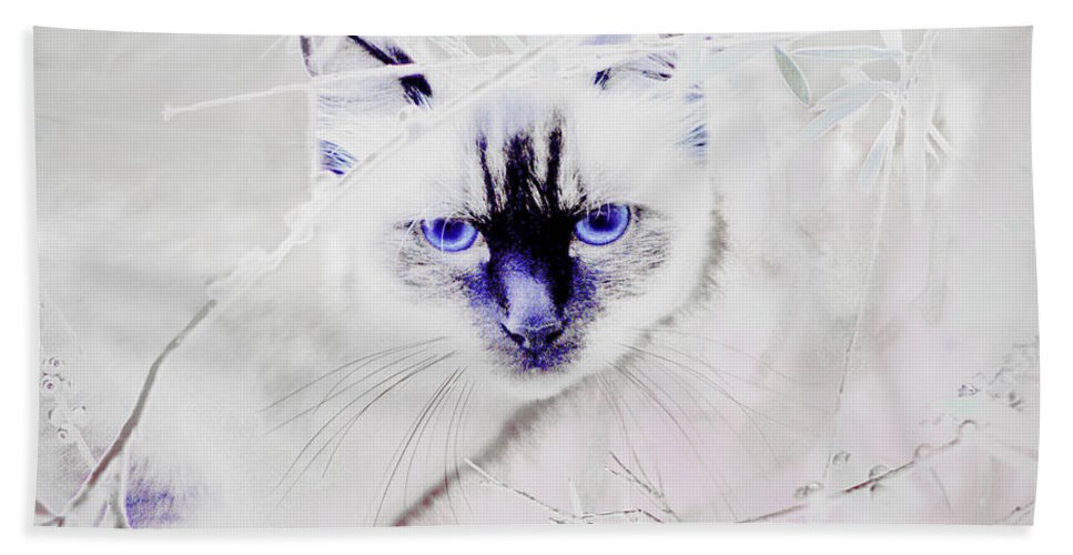 Animals Hand Towel featuring the photograph Spellbound by Holly Kempe