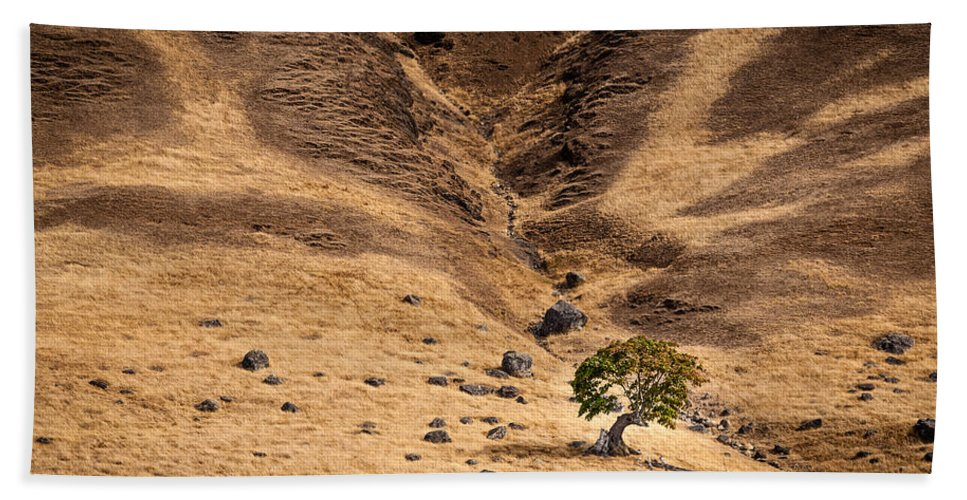 Abstract Hand Towel featuring the photograph Spieden Island 2 by Mike Penney