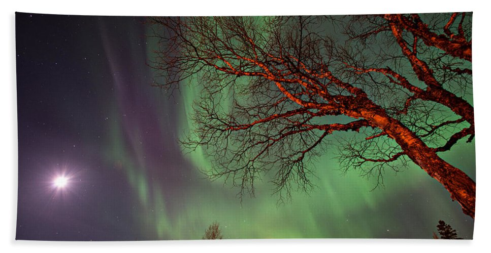 Northern Lights Bath Sheet featuring the photograph Spirits Of The Night  by Doug Gibbons