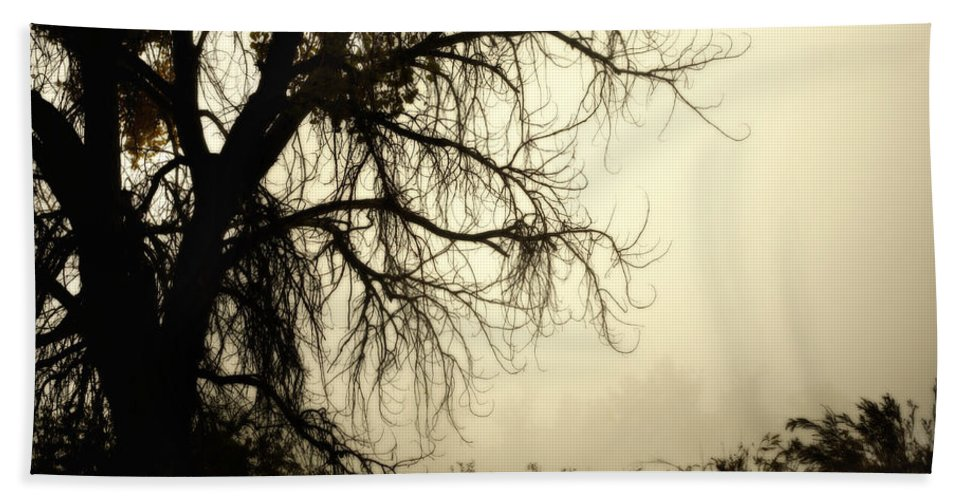 Fog Bath Sheet featuring the photograph Spooky Tree by Marilyn Hunt