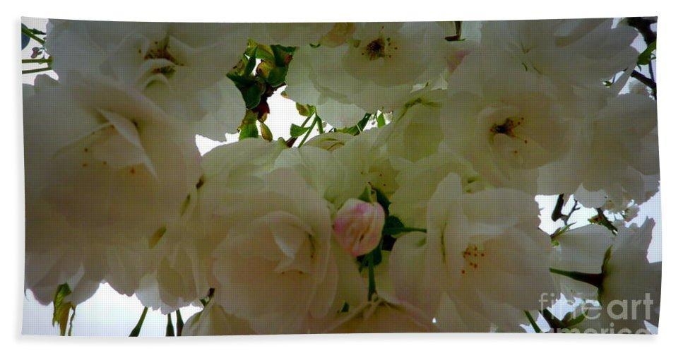 Spring Bath Sheet featuring the photograph Spring Blossoms by Susan Garren