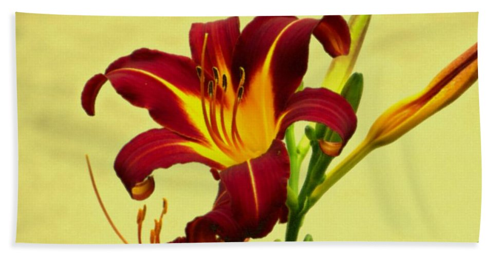 Posters Hand Towel featuring the photograph Spring Candor by Sonali Gangane
