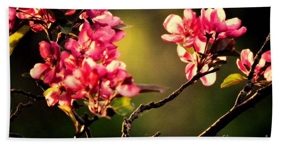 Flowering Trees Hand Towel featuring the photograph Spring Dance by Tami Quigley