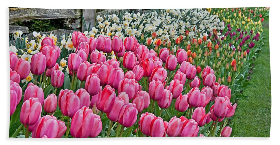 Spring Hand Towel featuring the photograph Spring Fence Landscape Art Prints by Valerie Garner